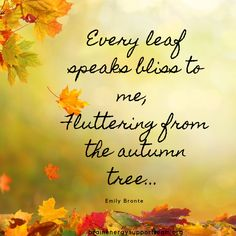 Ah, bliss ❤️🍁🍂. Happy almost fall, BEST Pinterest friends!  #TBITalk #fall #autumn #HappyFall #Fall2019