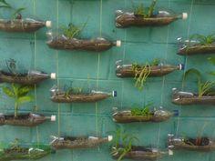 Bottles no more. Plant recipes better. Great idea!