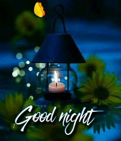 In today's post, we have brought you beautiful good night love images. If you love someone, and are looking for beautiful good night images for them. Good Night Flowers, Beautiful Good Night Images, Romantic Good Night, Cute Good Night, Good Night Gif, Good Night Sweet Dreams, New Good Night Images, Good Night Quotes Images, Good Night Messages