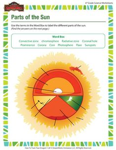 Parts of the Sun - Online Free 6th Grade Science Worksheet