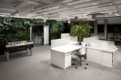Bausch + Lomb HQ by 137Kilo and Beza Projekt