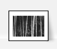 Bamboo Print, Tree Print, Bamboo Wall Art, Nature Print, Bamboo Decor Bamboo Stems, Instant Download, Black and White Bamboo Print by cozyphoto on Etsy Nature Prints, Art Nature, Bamboo Wall, Tree Print, Stems, Tapestry, Black And White, Wall Art, Unique Jewelry