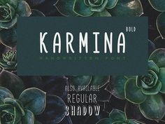 Karmina Bold is a free handwritten font designed by Dmitry Mashkin. It is, very readable, balanced and suitable for every kind of design.
