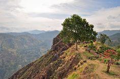 56613c4b11dc6a 13 Best Little Adams Peak images