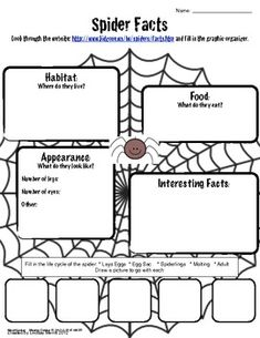 1000 images about spider anchor text unit on pinterest spider diary of and activities. Black Bedroom Furniture Sets. Home Design Ideas