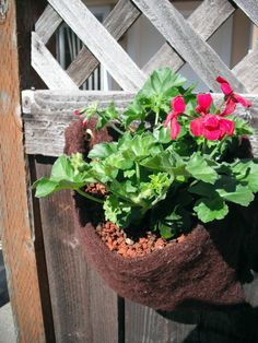 Hanging Felt planter in cranberry wool by fiberpuppy on Etsy, $20.00