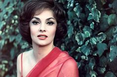 The former screen goddess Gina Lollobrigida has described how she mounted an amateur sting operation against the man she says falsely claims to have married her.The Italian actress, once dubbed Hollywood Stars, Hollywood Divas, Golden Age Of Hollywood, Vintage Hollywood, Hollywood Glamour, Hollywood Actresses, Classic Hollywood, Gina Lollobrigida, Sophia Loren