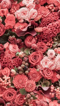Lots Of Different Shades Of Reds Vintage Phone Wallpaper Flower Phone Wallpaper Roses Iphone