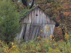 Oh, how I love an old run-downed barn..