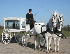 Horse-Drawn Funeral Carriage | Madgwick Horse-Drawn Funeral Hearse Service