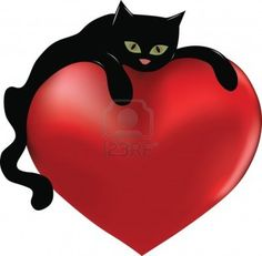 love and black cats