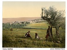 Cana, near Nazareth, where Jesus performed the miracle of wine. Holy Land images.Contact us to arrange a private tour guide in Israel.