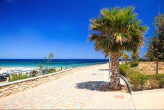 Het 346 lange en 45 meter brede witte zandstrand van Mil Palmeras ligt het meest zuidelijk van #Orihuela Costa. Op de belangrijkste stranden in Orihuela Costa zijn er ligstoelen en parasols te huur en kan men gratis gebruik maken van de stranddouches. Meer info op onze website: http://www.newvillasinspain.com/nl/nieuws/