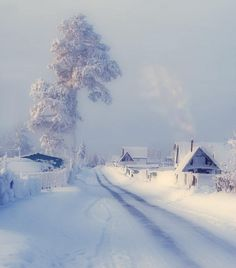Snowy Village Road - this place is stunning but I'm kind of glad I don't live here.