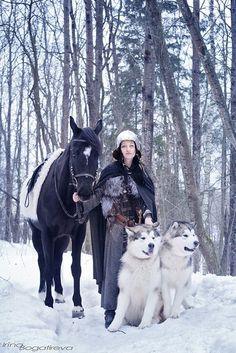 Yar and Thor, Alaskan Malamutes   Photo Huskies and Malamutes