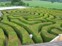 LongLeat Maze, un precioso laberinto geométrico. | Matemolivares