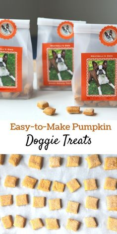 Three-Ingredient Pumpkin Dog Treats That Fido Will Love! Pumpkin is a healthy source of fiber and nutrients for dogs. It helps them digest meat and bones, especially when they are on a raw food diet. More importantly, pumpkin is a natural remedy for, well Puppy Treats, Diy Dog Treats, Healthy Dog Treats, Pumpkin Treats For Dogs, Pumpkin For Puppies, Pumpkin Recipes For Dogs, Homemade Dog Cookies, Homemade Dog Food, Dog Biscuit Recipes