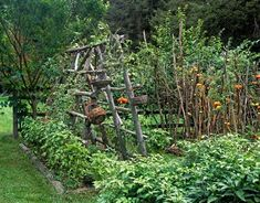Potager Garden Style: Combining Edible & Flowering Plants In the French Tradition
