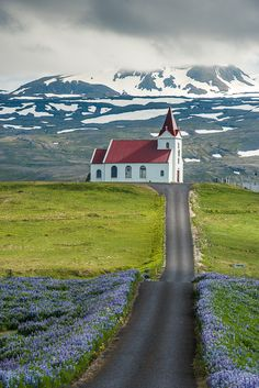 Post card of Iceland