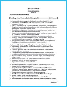 Business Consultant Resume In The Data Architect Resume One Must Describe The Professional
