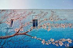 Cherry blossom painted wall