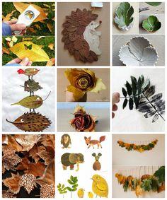 Minden évben csodálattal szemlélem a természet őszi változásait  azaranyló falevelek hullását  a sápadt napsuga...