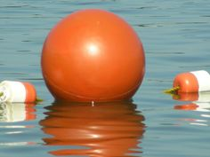 Orange Sphere by Roxanne Wegman, via Flickr