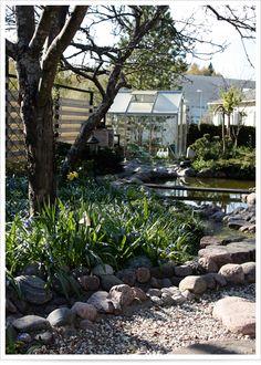 My mother's garden in vantaa, finland.
