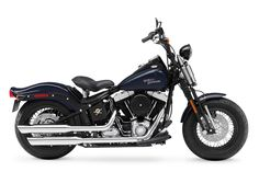 Photo Gallery: A Buyer's Guide for Every 2009 Harley-Davidson Motorcycle: Softail Cross Bones FLSTSB