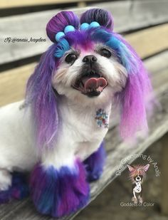 Dog Grooming, Cute Animals, Dogs, Fictional Characters, Color, Art, Pretty Animals, Art Background, Cutest Animals