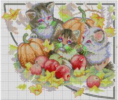 four seasons cats (no key) 2/5