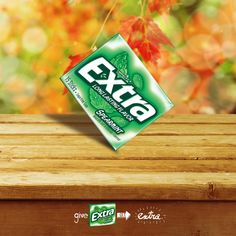 Fall is here! Have you tried balancing Extra gum on its corner yet? Extra Gum, Fall Is Here, Have You Tried, Blog, Corner, Love, Blogging
