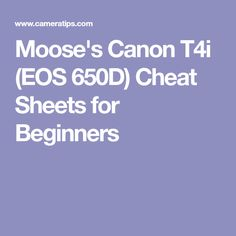 Moose's Canon T4i (EOS 650D) Cheat Sheets for Beginners