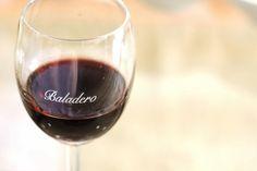 Château de Jane: Vinhos bons, bonitos e baratos. Como não amar vinhos que além de saborosos cabem no bolso?