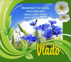 24.7 Vlado Smoothie, Plants, Smoothies, Shake, Flora, Plant, Planting
