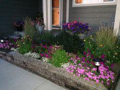 My front garden. Peonies Garden, Gardens, Plants, Inspiration, Biblical Inspiration, Outdoor Gardens, Plant, Inspirational, Garden