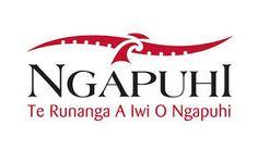 Image result for Maori Women's Development Incorporated