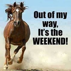 it's the weekend images for facebook | Its The Weekend Pictures, Photos, and Images for Facebook, Tumblr ...