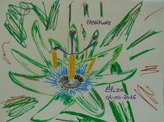 Passiflore fleur tropicale du maracuja (fruit de la passion). Dessin d'Elize http://www.pigmentropie.fr/