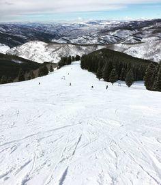 ESTACIÓN DE VAIL COLORADO EEUU   Vail es la estación de esquí más grande de los Estados Unidos. Situada en Colorado en las mismas Montañas Rocosas cuenta concasi 40 kilómetros cuadrados de zonas esquiables.  Es un centro de esquí compuesto por cuatro estaciones:Vail Beaver Creek Breckenridge Keystone y Arapahoe Basin a las que es posible acceder comprando un forfait válido para todas ellas.  La nieve en las Montañas Rocosas es una gozada nieve polvo muy seca y con tantos kilómetros…