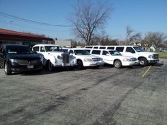 Reserve your vehicle today, and make your 2014 prom a Royalty one! Call today! 708-229-2944 www.royalty-limo.com