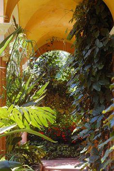 Cap ferrat francia on pinterest french riviera villas for Cap d agde jardin
