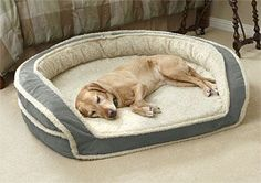 Just found this Large Dog Bed - Oversized Horseshoe Bolster Dog Bed with Memory Foam -- Orvis on Orvis.com!