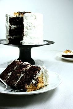 S'mores Cake  ..3 layers of chocolate cake w/ graham cracker crunch & toasted marshmallow frosting...Oh Goodness!!!