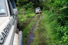 It happens to all of us once in a while... You're driving along in your big 4x4 with a decent set of tyres and you're overtaken by this yearning to veer off the beaten track and take to the bush. Let's face it, it's the natural thing to do.  However, off-road is no place to be if you don't know how to handle yourself and your vehicle.  Whatever the terrain, use your common sense, think about what you are heading into and plan accordingly.  Again, always take along a decent tow-rope, and a… Yearning, Common Sense, Offroad, 4x4, Things To Do, Vehicle, Track, Country Roads, Handle