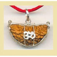 Rudraksha Shankh Yantra Kavach Gemstones from www.dharmikshakti.in: एक मुखी रुद्राक्ष,1 मुखी रुद्राक्ष