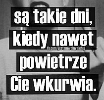 Stylowa kolekcja inspiracji z kategorii Humor Some Quotes, Real Quotes, Happy Quotes, Funny Quotes, Weekend Humor, Magic Words, Just Smile, Romantic Quotes, Quotations