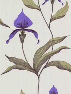 Buy Cole & Son Orchid Wallpaper, Violet, 66/4024 online at JohnLewis.com - John Lewis