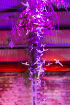 The perfect #designer #experience to the expression #dreambelievefly at Themba Gala 2018. Whimsical installation of 2000 ceramic birds suspended from the venue ceiling to create a beautiful and dramatic focal point.  #gala #galadinner #DIY #ceramic #birds #event #styling #eventstyling #pottery #Eventsmanagement #birdinstallation #installation #weddingideas