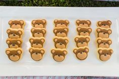 Teddy Bear Party Ideas